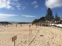 Beach Scene (1) (Small)